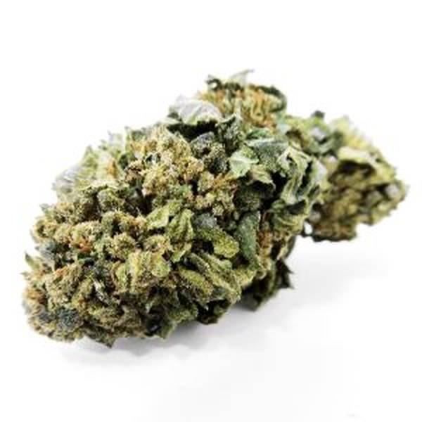 CBD Wholesale Buffalo
